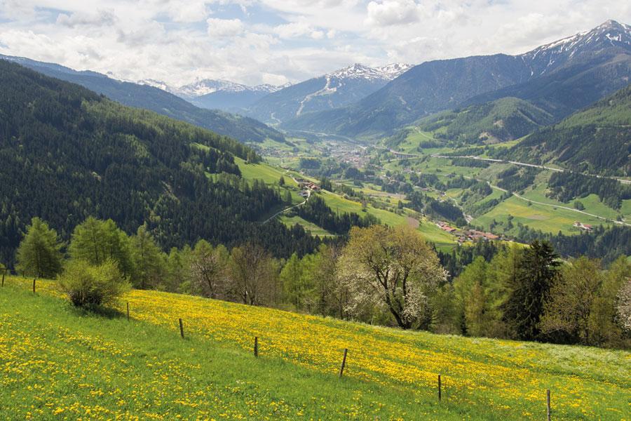 Tirol Sommer Blick auf Matrei
