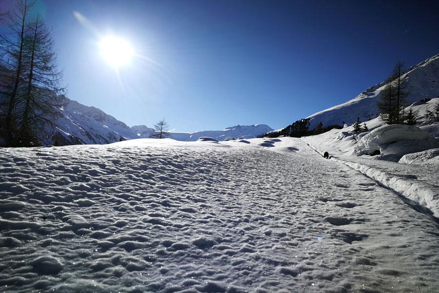 Touring skis Nasserein