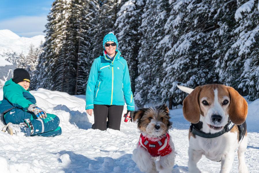Familienausflug mit Hund